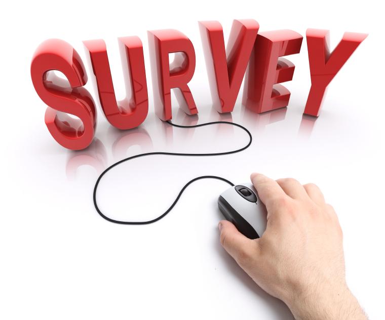 Hanover Survey